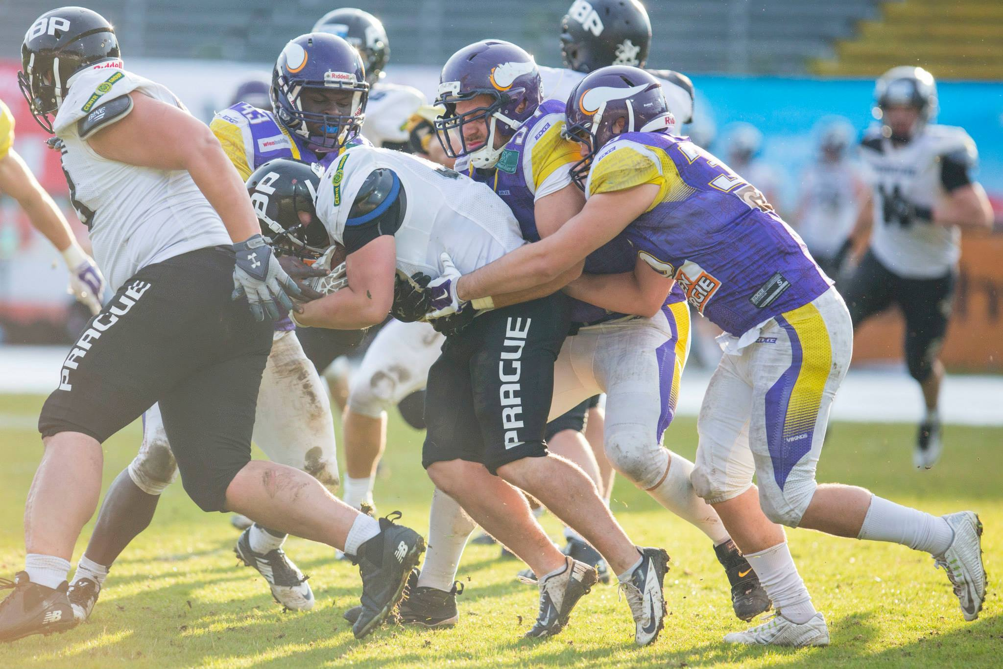 Vienna Vikings vs PBP 2015 - foto Holly Kellner